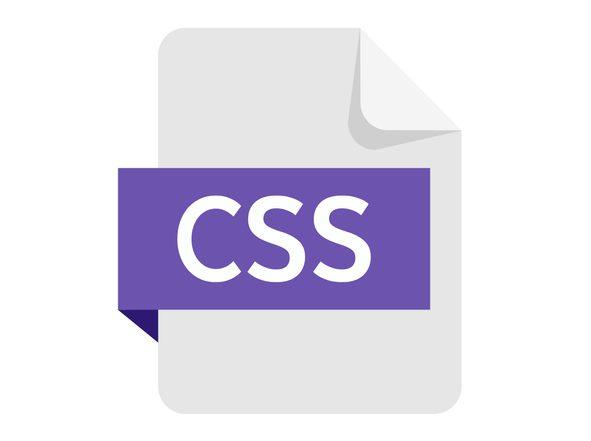 右上が折れている紙に白文字でCSSと書かれている紫の帯がまかれている